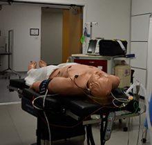 Mannequin patient simulator